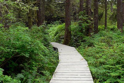 Hiking Trails between Ucluelet and Tofino