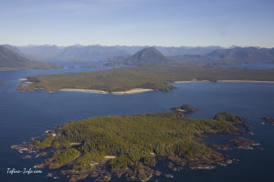 Tofino-Top-Things_w