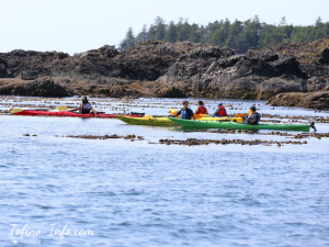 kayaking-ucluelet_w